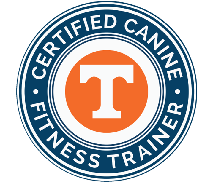 CCFT logo