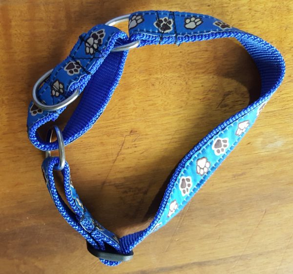 patterned martingale