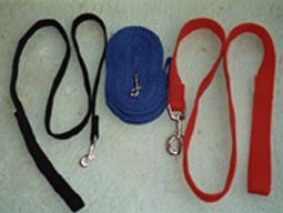 training leads